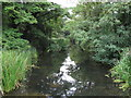 TM0434 : River Stour, from footbridge by Roger Jones