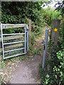 SJ3969 : A540 Path by J Scott