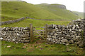 SD9967 : Footpath in Conistone Dib by Tom Richardson