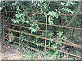 SP1861 : Old gate on bridleway to Bearley by David P Howard
