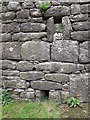 SX6979 : Walling details at Challacombe by Stephen Craven