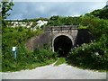 TQ0211 : Disused tunnel under railway at Amberley by Shazz