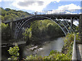 SJ6703 : Iron Bridge by David Dixon