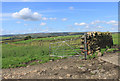 SD9805 : Summer afternoon on Wharmton Hill by Michael Fox
