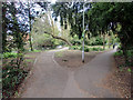 TQ2162 : Park, Ewell West, Epsom, Surrey by Christine Matthews