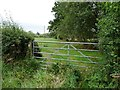 SO5469 : Public footpath heading east by Christine Johnstone