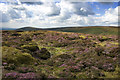 SD6247 : Heather Moor Burnslack Fell by Tom Richardson