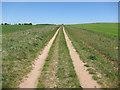 TL5449 : Bridleway to Roman Road by Hugh Venables