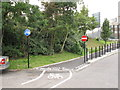 TQ1882 : Cycle track from Priory Gardens to cross Hanger Lane by David Hawgood