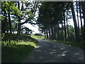 SJ9683 : Lyme Park approach drive looking toward The Cage by Colin Pyle