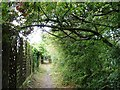 SE2611 : Footpath at the edge of Clayton West by Christine Johnstone