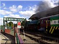 SE3800 : Elsecar Heritage Railway by derek dye