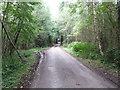 SU8725 : Scotland Lane through Little Common by Dave Spicer