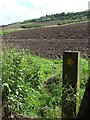 NZ3345 : Public footpath near High Moorsley by Malc McDonald