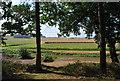 TL1140 : Irrigation on Farmland Rowney Warren Woods by Martin
