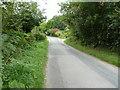 SU8425 : Iping Lane near Robin's Farm by Dave Spicer