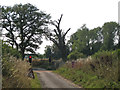 SP2380 : Light signals on Mercote Hall Lane  by Robin Stott