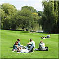 SU9850 : Lunch on the lawn, University of Surrey by David Hawgood