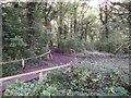 TQ4368 : Track in Thornet Wood by David Anstiss