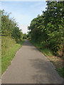 SS8583 : National Cycle Route 4 in Cwm Ffos by eswales