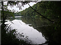 SJ9791 : Etherow Country Park by Stephen Burton