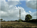 TQ5009 : Pylon and tree by Robin Webster