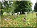 SP9832 : Church End- St. John the Baptist, Eversholt: graveyard (a) by Basher Eyre