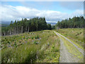 NN5953 : Forest track in Rannoch Forest by Russel Wills