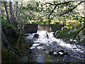 NN5956 : Weir on Dall Burn by Russel Wills