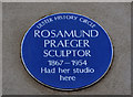 Photo of Rosamund Praeger blue plaque