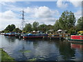 TQ3590 : Canal Boats near Tottenham Marshes on Lee Navigation by PAUL FARMER