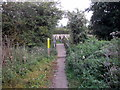 TL6320 : Footbridge across the River Chelmer on the Flitch Way by PAUL FARMER