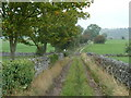 SK2072 : Walled track north of Great Longstone by Andrew Hill