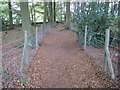 SK3261 : Footpath through wood near Lant Lodge Farm by Chris Wimbush