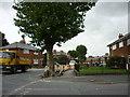 TA1230 : St John's Grove at College Grove by Ian S