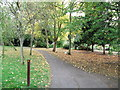 TQ3574 : Green Chain Walk in Brenchley Gardens (2) by David Anstiss