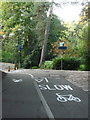 SZ0891 : Bournemouth: new markings for cyclists in the Gardens by Chris Downer