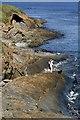 NU0249 : The shoreline at Saltpan Rocks : Week 39