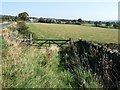 SE2407 : Field entrance south of Denby Lane by Christine Johnstone