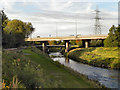 SJ8390 : River Mersey, Northenden Riverside Park by David Dixon