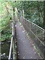SE2203 : Thurlstone - footbridge on Leapings Lane to Saville Lane footpath by Dave Bevis