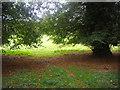 SU9299 : Field by London Road, Little Missenden by David Howard