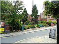 SJ8662 : Congleton in Bloom Community Garden by nick macneill