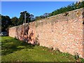 NZ3528 : Formerly heated brick wall, off Wykes Close, Sedgefield by Andrew Curtis