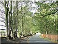 TL6359 : Country Road by Keith Evans