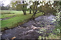 SJ9966 : River Dane by Trevor Harris