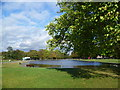 TQ2974 : Long Pond, Clapham Common by Ian Yarham