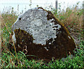 ST9629 : Roadside boulder by Jonathan Kington