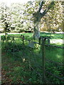 ST8115 : Gate near Manston Church by Miss Steel