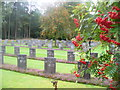 SJ9815 : German Cemetery, Cannock Chase by Colin Smith